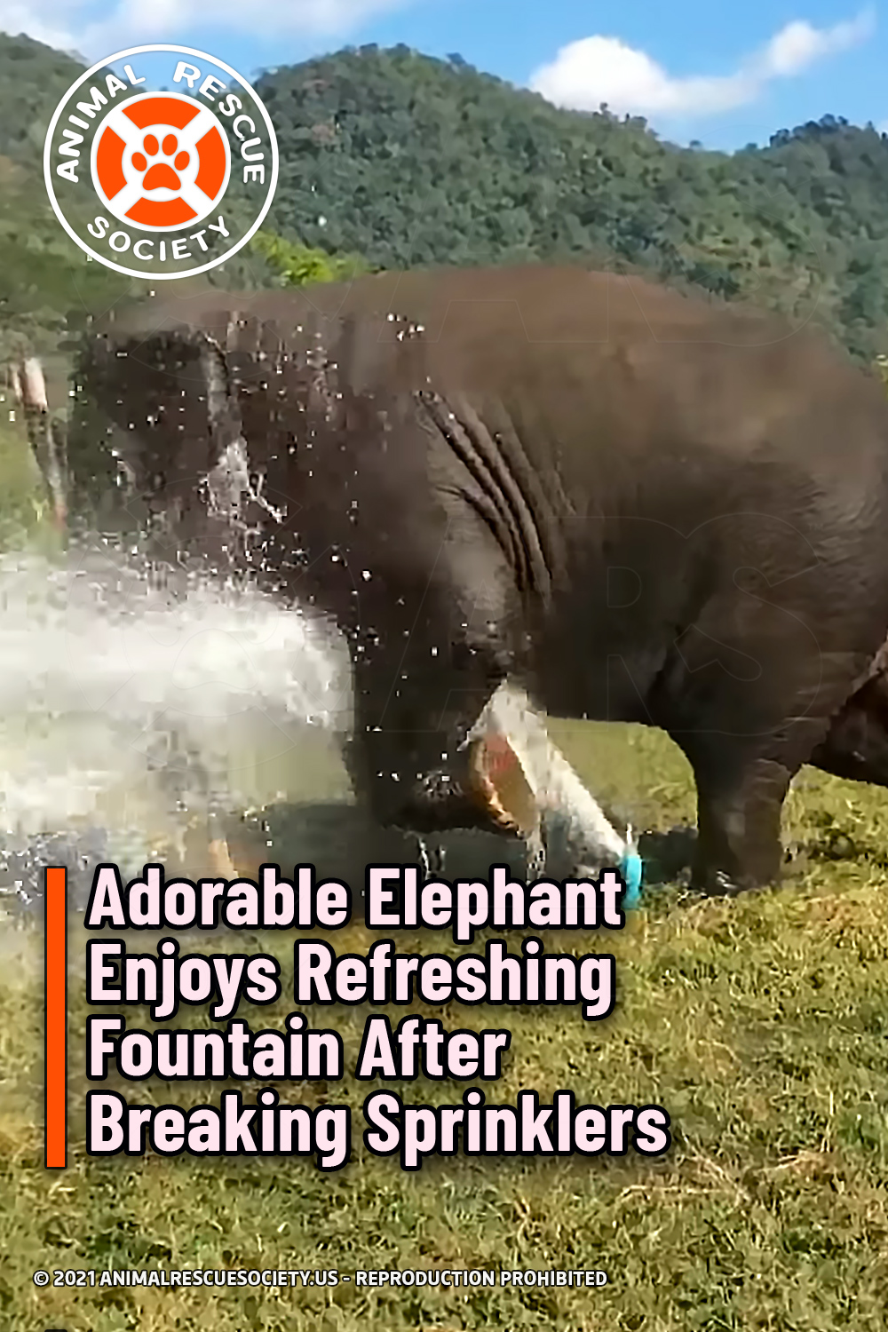 Adorable Elephant Enjoys Refreshing Fountain After Breaking Sprinklers