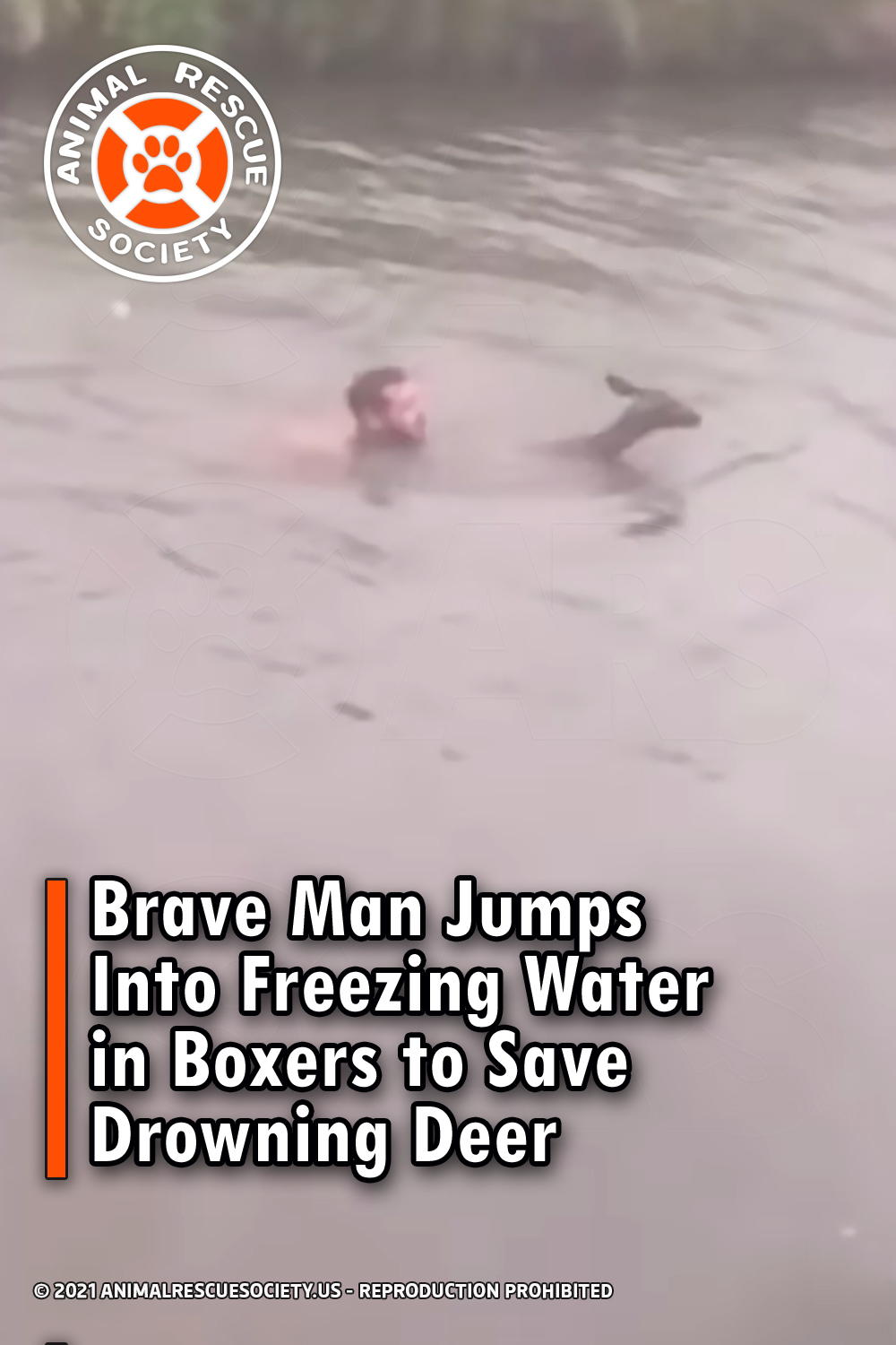 Brave Man Jumps Into Freezing Water in Boxers to Save Drowning Deer