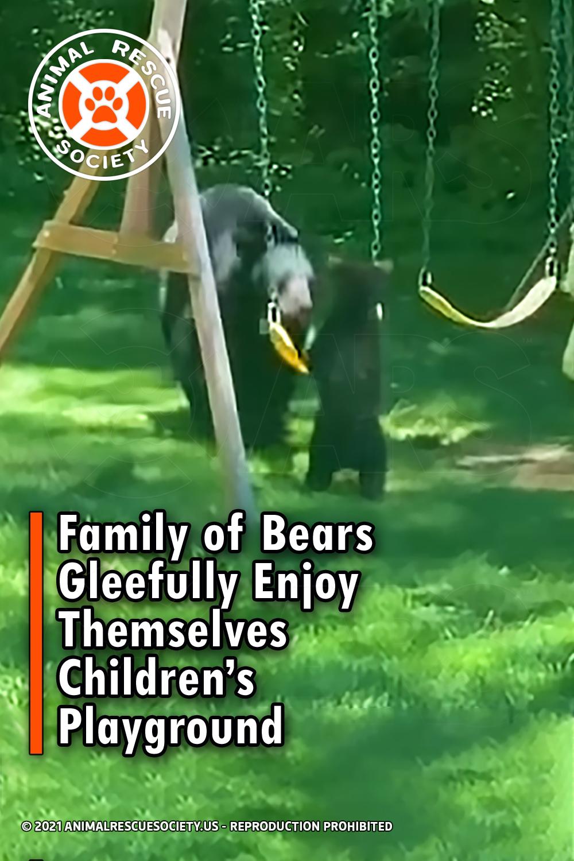 Family of Bears Gleefully Enjoy Themselves Children's Playground