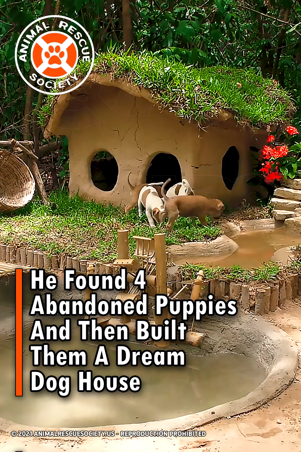 He Found 4 Abandoned Puppies And Then Built Them A Dream Dog House