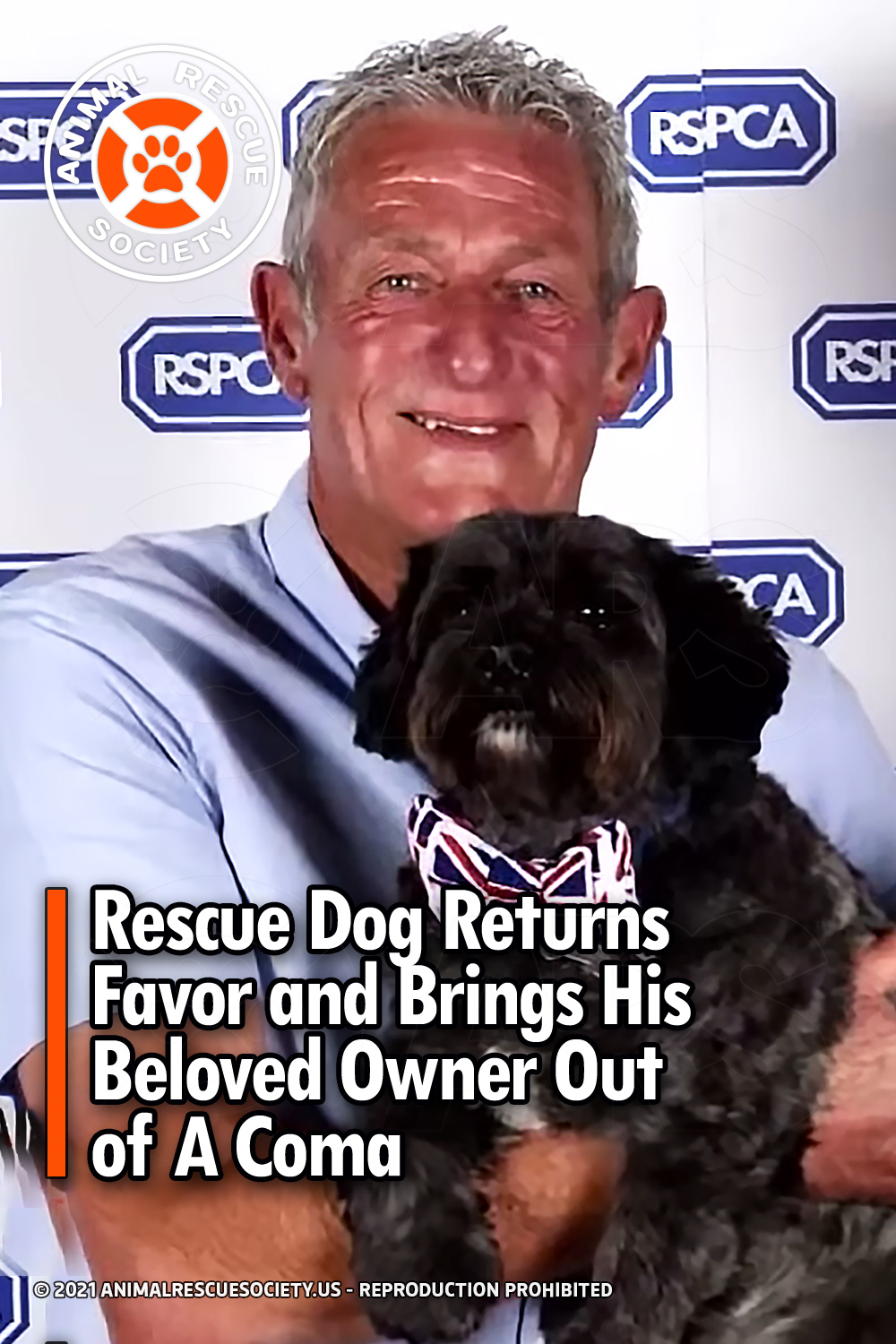 Rescue Dog Returns Favor and Brings His Beloved Owner Out of A Coma