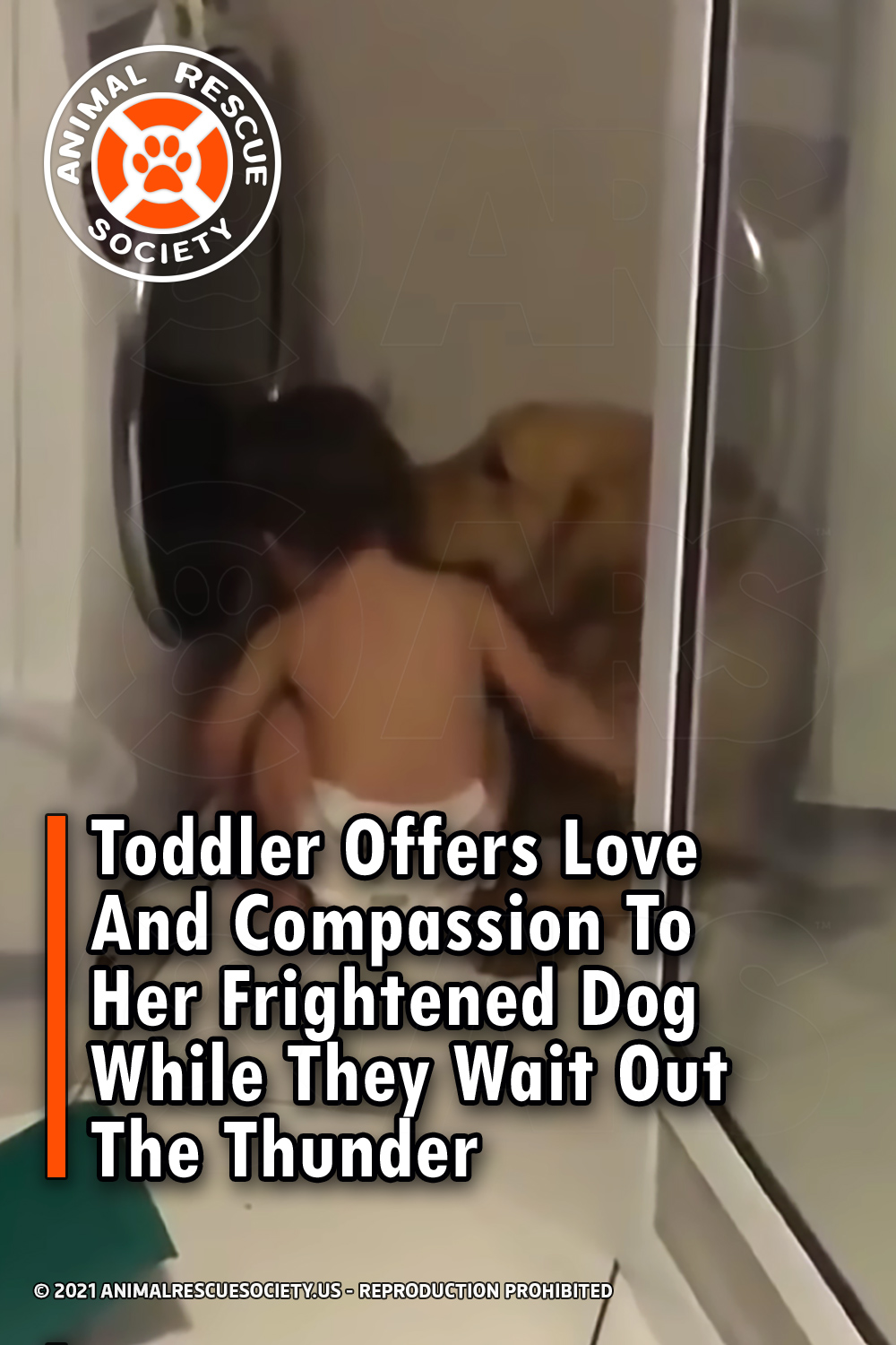 Toddler Offers Love And Compassion To Her Frightened Dog While They Wait Out The Thunder