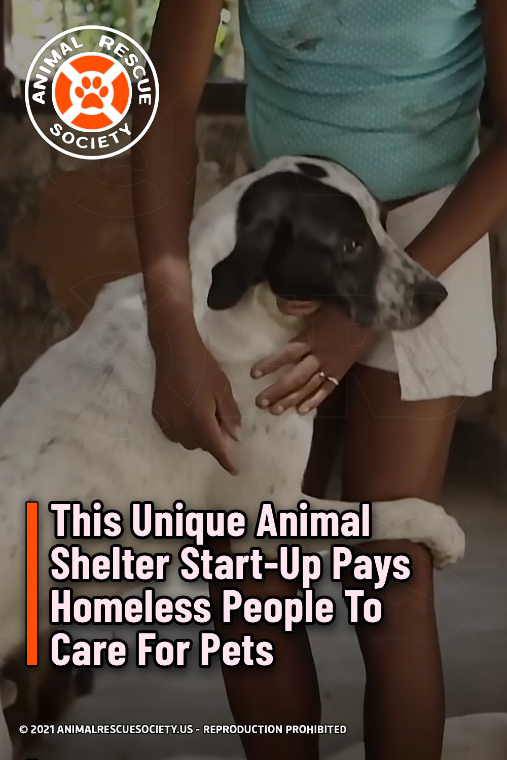 This Unique Animal Shelter Start-Up Pays Homeless People To Care For Pets