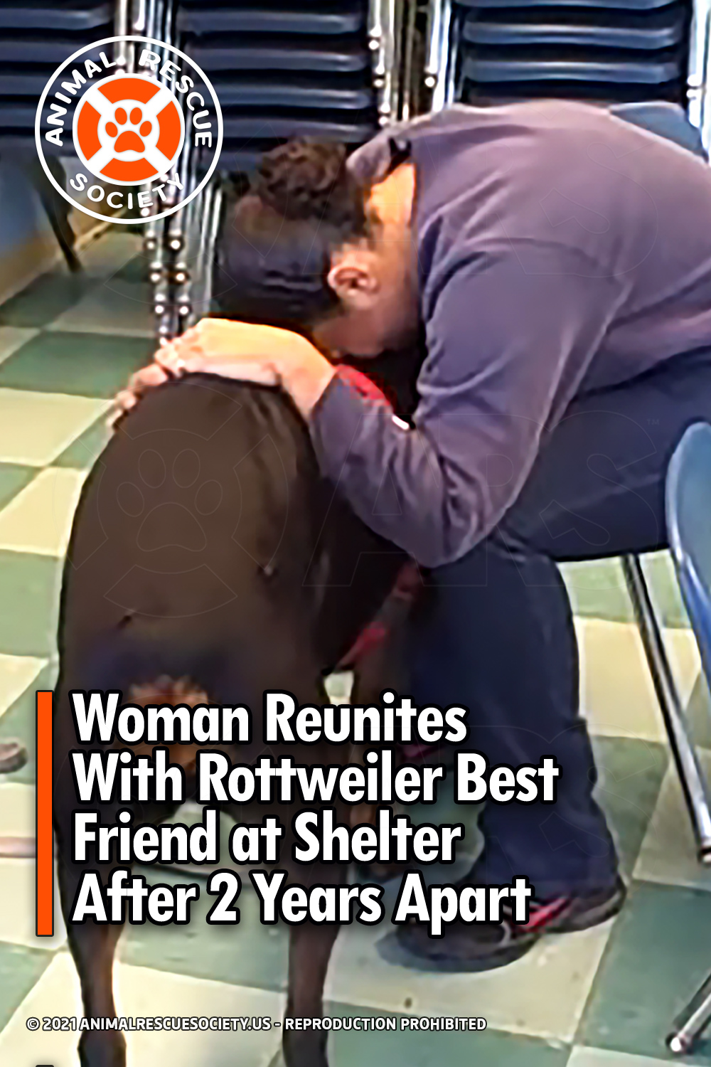 Woman Reunites With Rottweiler Best Friend at Shelter After 2 Years Apart