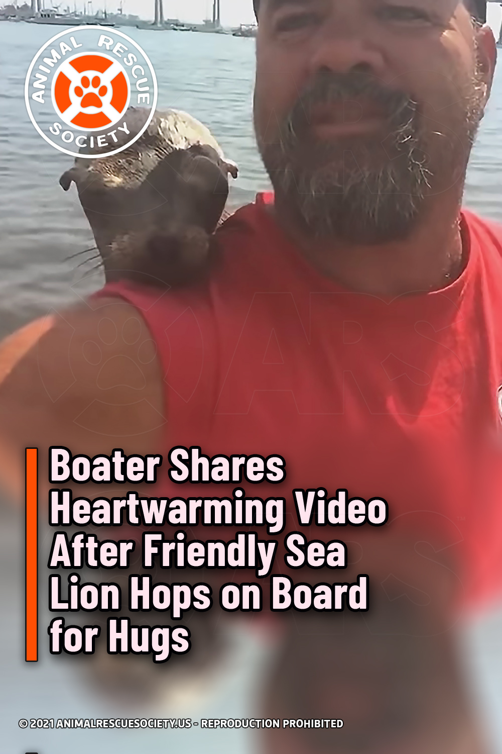 Boater Shares Heartwarming Video After Friendly Sea Lion Hops on Board for Hugs