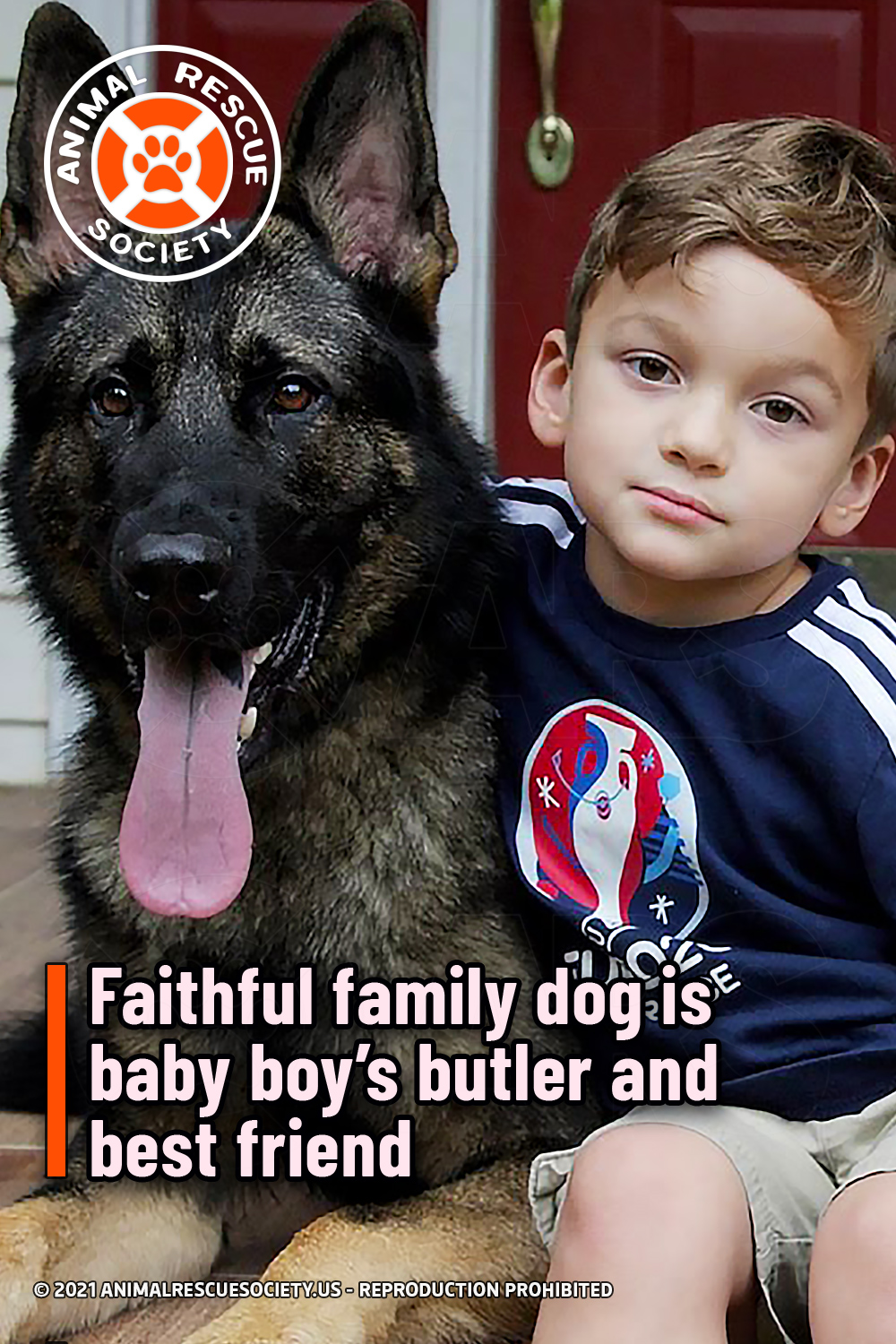 Faithful family dog is baby boy's butler and best friend