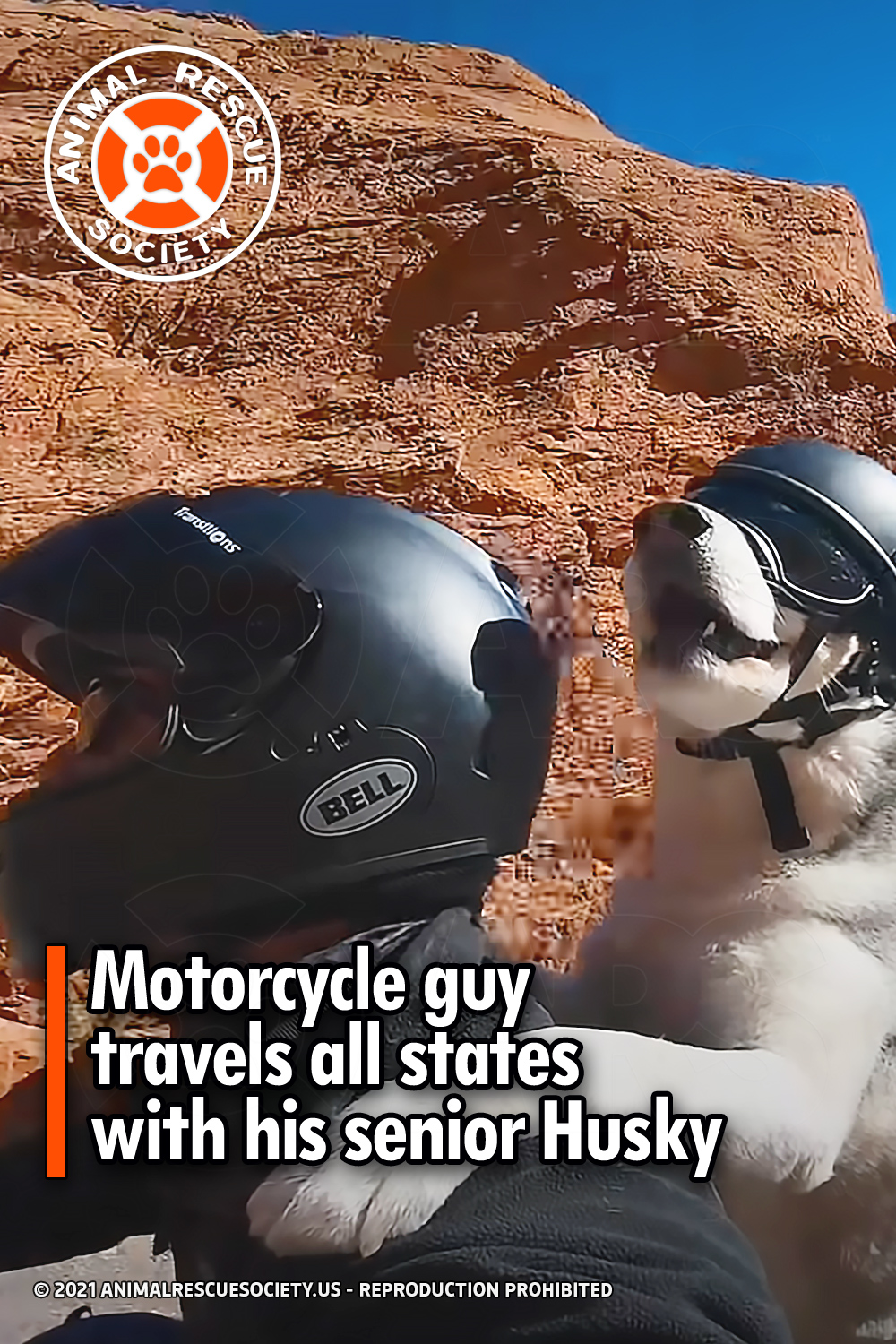 Motorcycle guy travels all states with his senior Husky