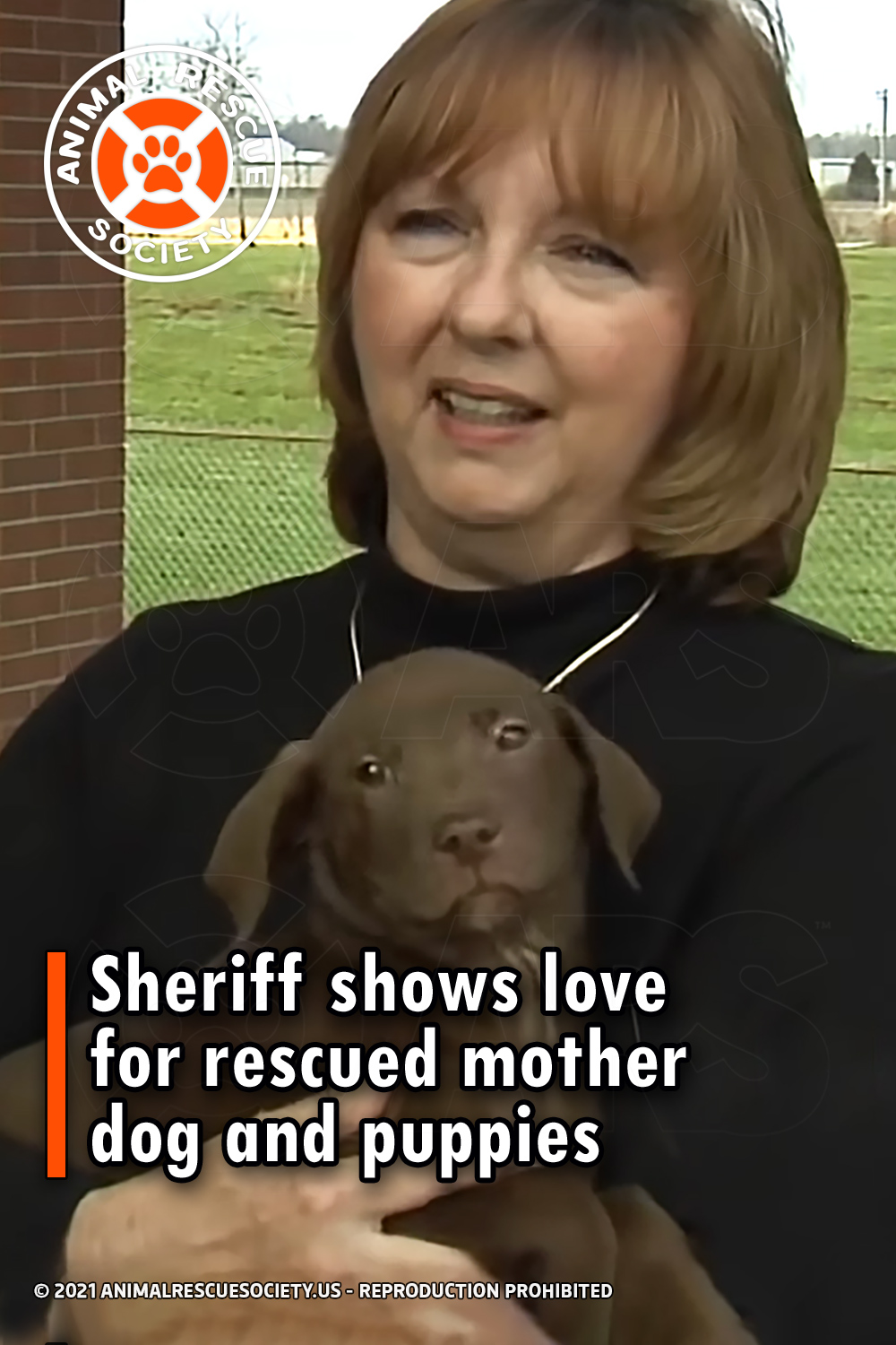 Sheriff shows love for rescued mother dog and puppies