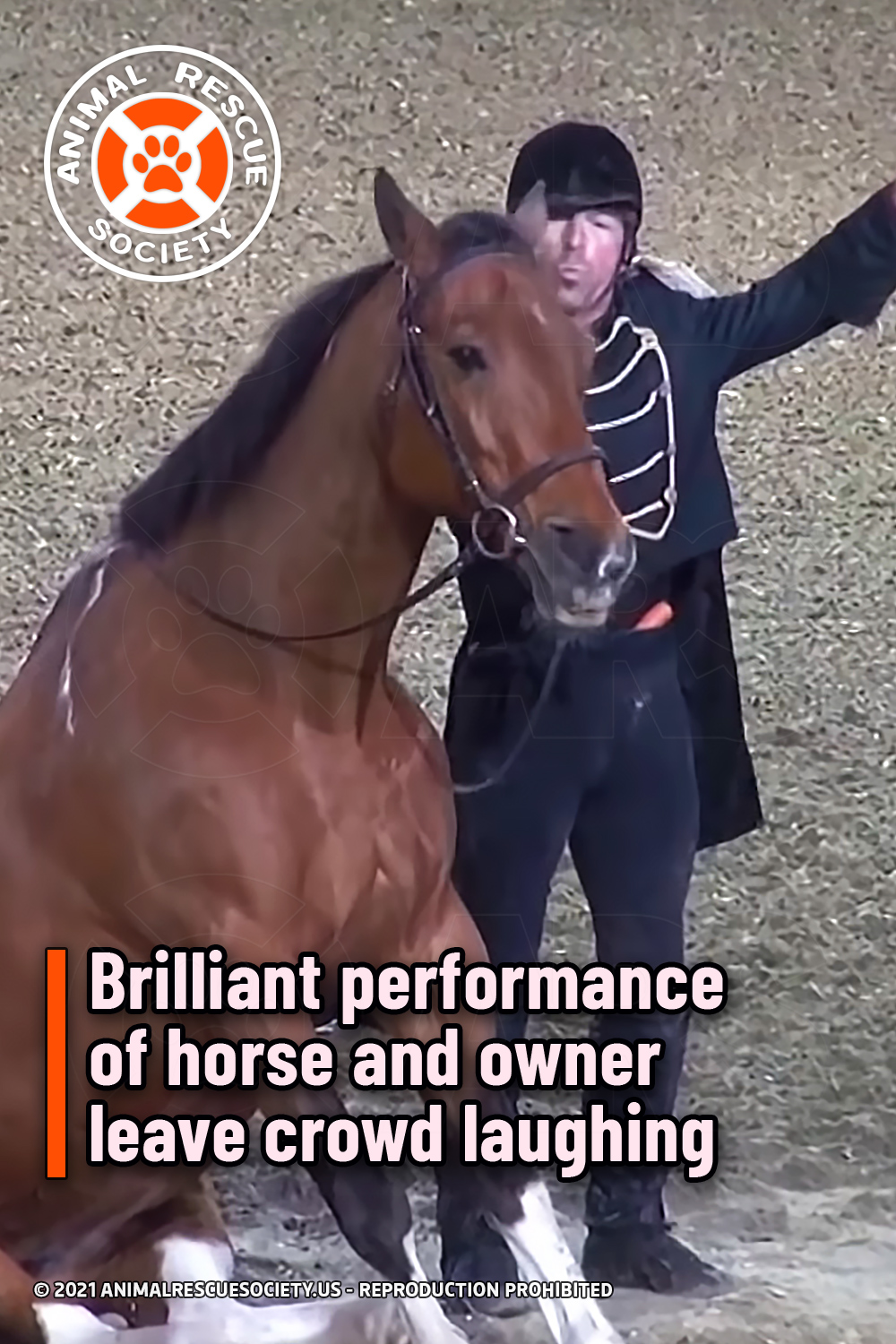 Brilliant performance of horse and owner leave crowd laughing