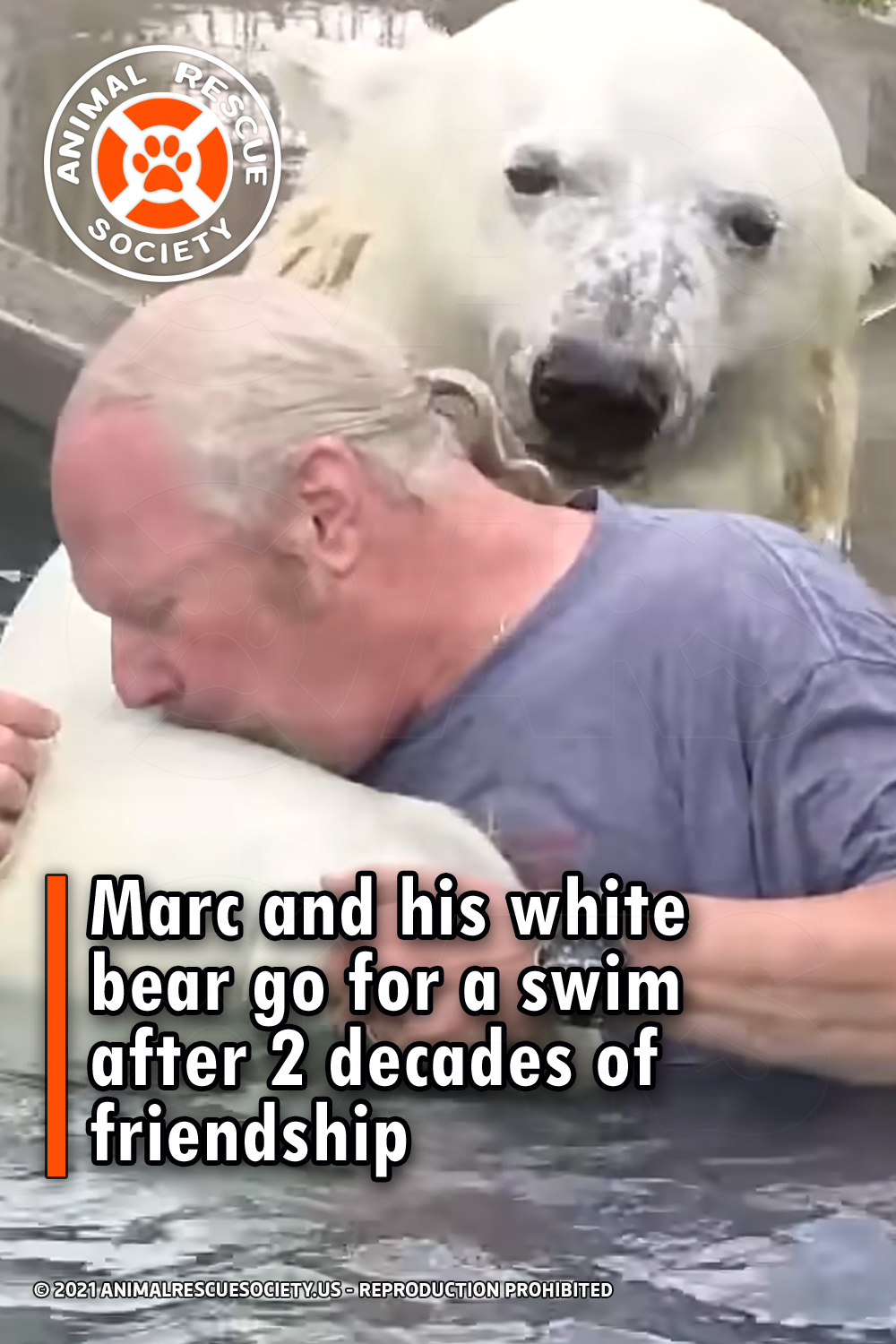 Marc and his white bear go for a swim after 2 decades of friendship