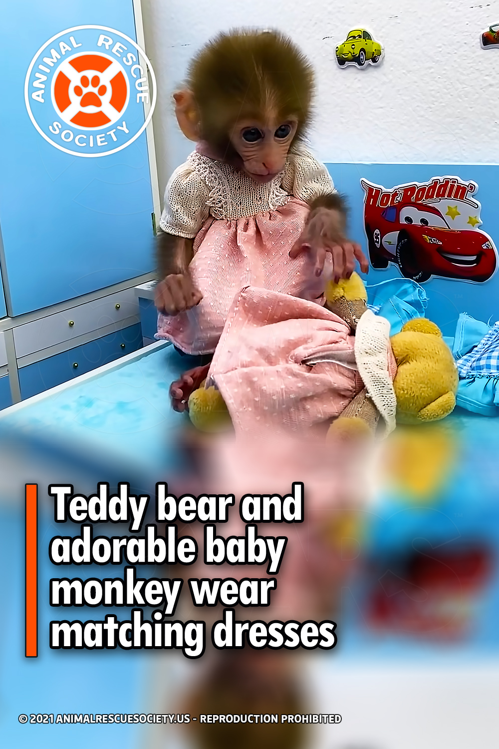 Teddy bear and adorable baby monkey wear matching dresses